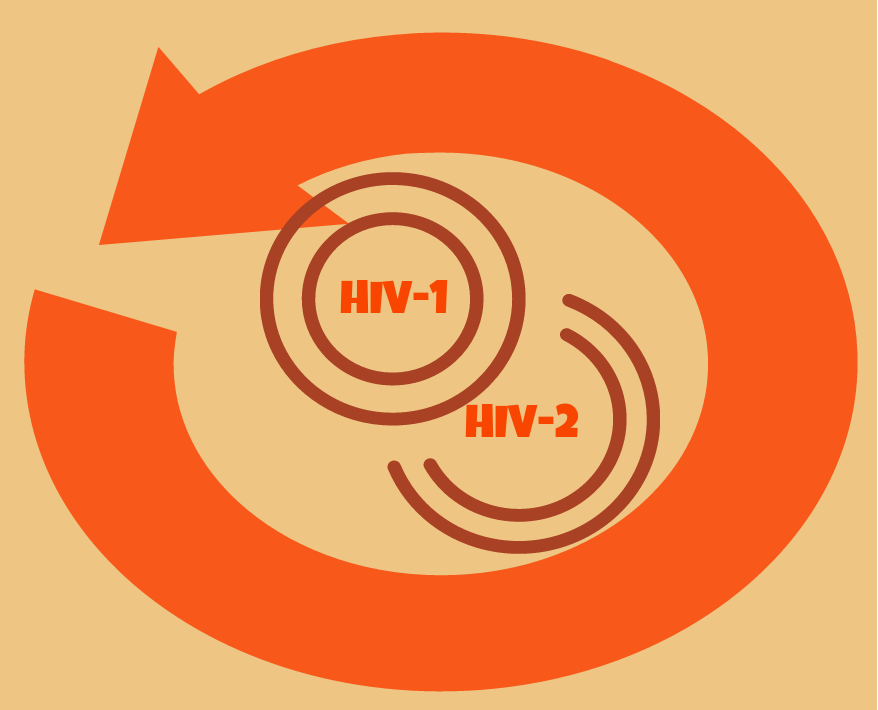 Two Sides of the Same Coin: HIV-1 and HIV-2 Testing