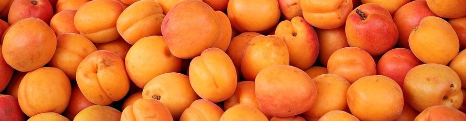 apricot-vajayjay